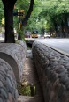 These trenches help water the over 100,000 trees that line every street in the city.