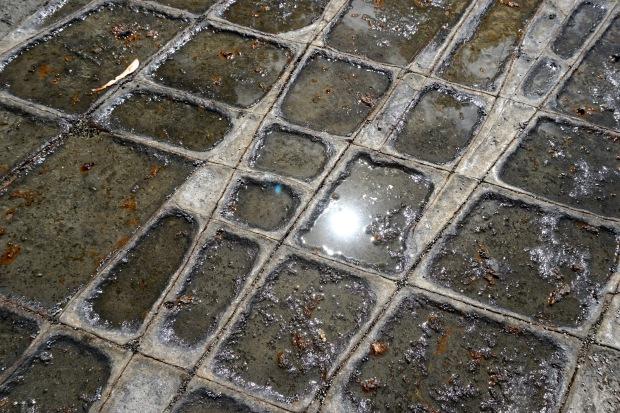 Tessellated Pavement